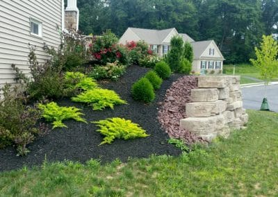 Canyon Outcropping retaining wall & planting